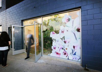 La Wraps Window Wrap Art Gallery